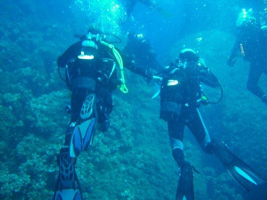 Elba, Olaszország: immergersi nel blu