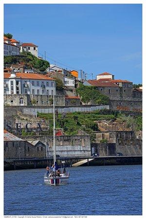A navegar pelas águas do Rio Douro em direcção às margens ribeirinhas.