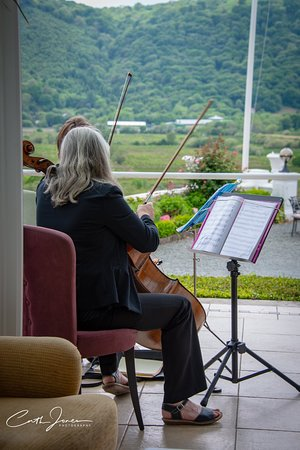Plas Maenan Country House Hotel: Music to match the view