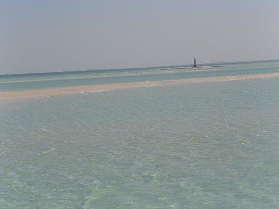 Sand bars