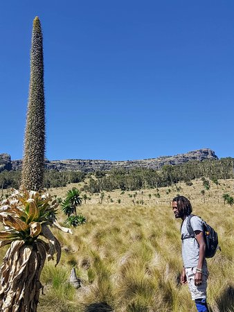 Amhara Region, Etiopia: getlstd_property_photo