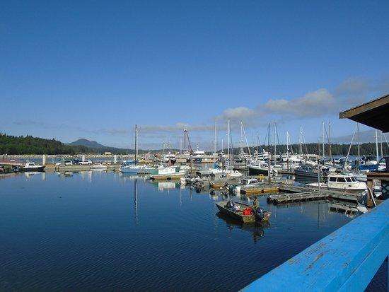 Port McNeil Harbor