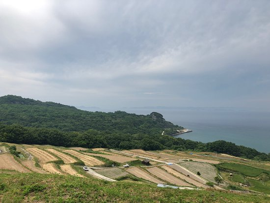 Teshima Terraced Rice Field Project