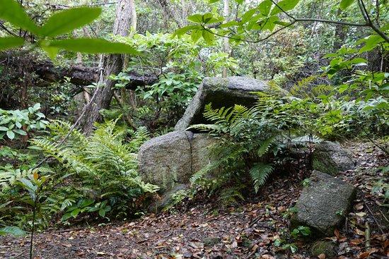 Shiroishi Tomb