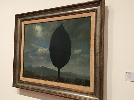 Museo d'arte della Svizzera italiana - MASI Lugano照片