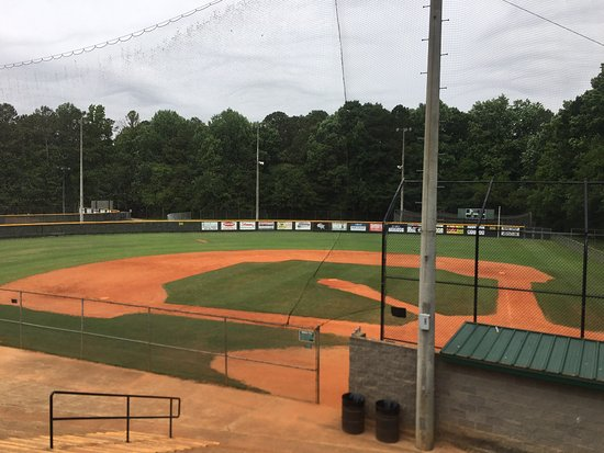 Fullers Park: One Football/Soccer field, Five Baseball fields plus batting cages