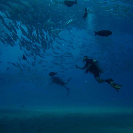 Cabo Pulmo Sport Center: Diving on my prior trip