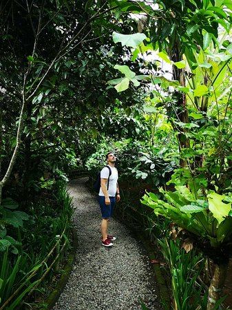 Penglipuran Home Stay: a beautiful and interesting place on your trip to Ubud bali
