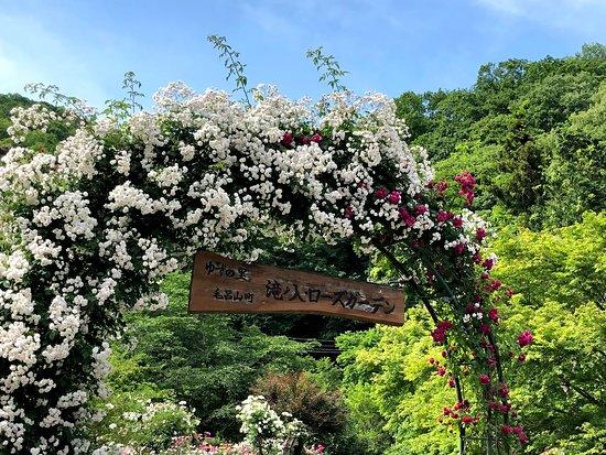 Takinoiri Rose Garden