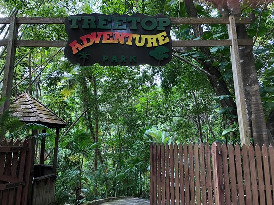 Jeep & Zipline Adventure in St. Lucia: Zip lining was alot of fun. we really enjoyed it.  The other couple that we meet had a go pro and took pictures, but we never received them. so unfortunately we don't have any pictures of the actual ziplining