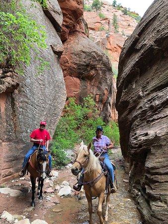 The beautiful spring creek slot canyon