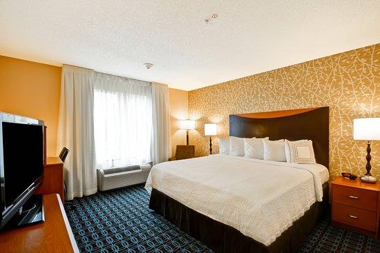 Fairfield Inn & Suites Tampa Fairgrounds/Casino: Guest room