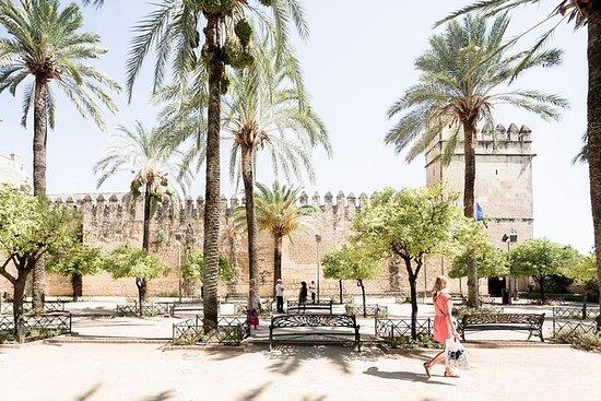 Gita giornaliera da Malaga a Cordoba