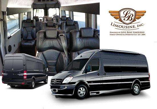 LB Limousine: Mercedes Benz Sprinter Coach (14 Capacity)