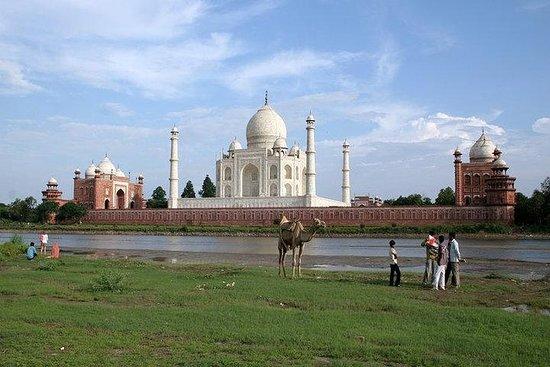 Taj Mahal Day Tour från Delhi med All ...