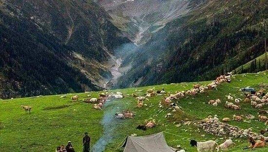 Keran, Pakistan : Baboon Valley