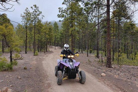4h Forest Quad Tour en Polaris 500cc...
