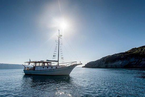 Tour de dia inteiro com um barco...