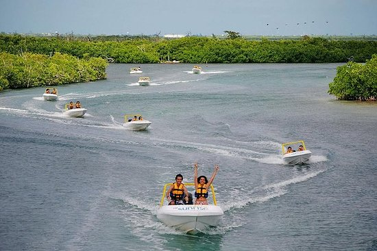 SSS Experience. Speedboat, Snorkel, and Sightseeing in Cancun, Must Do Activity: Speedboat, snorkel and sightseeing in Cancun, a must do activity for travelers.