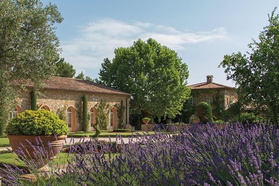 Provence Wine Tour - from Nice and...