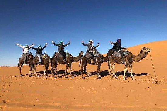 Merzouga沙漠营地的1夜骆驼徒步旅行