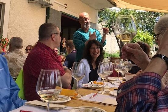 Wine experience: tasting of wines and...