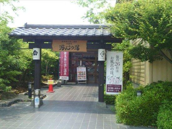 Kamitsu Tennen Onsen Yushin no Yu