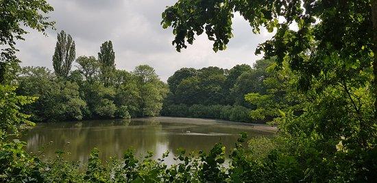 Ziegelweiher Park