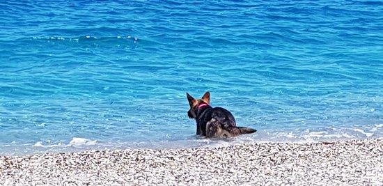 Mourteri, Griechenland: Κολύμπι, στην παραλία της Μουρτερής