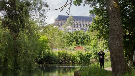 Le marais de Bourges: La cathédrale de Bourges