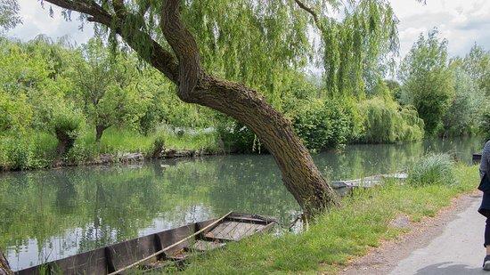Le marais de Bourges: Une barque
