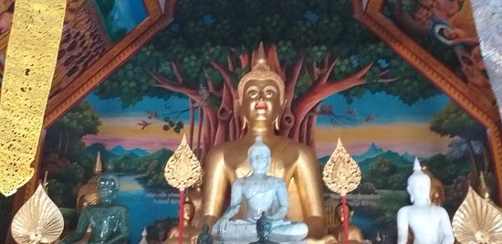 Peace of the Bodhi Tre