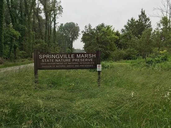 Springville Marsh State Nature Preserve