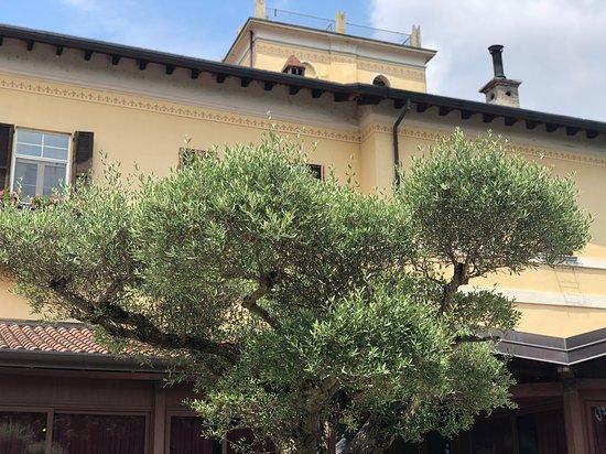 Cornate d'Adda ภาพถ่าย