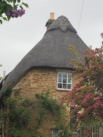 Tour of the Cotswolds from Moreton-in-Marsh: The beauty of the thatched cottages