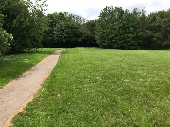 Leavesden Country Park: The park