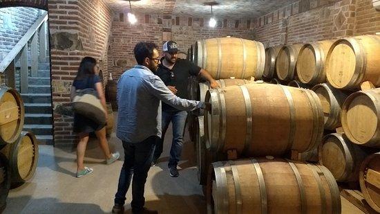 ואלה דה גואדלופה, מקסיקו: Tours por el Valle de Guadalupe, dónde se produce el 80% del vino mexicano. Las fiestas de la vendimia inician en el mes de agosto.