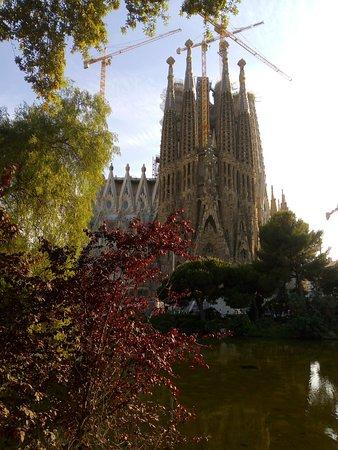 Basilica of the Sagrada Familia: Some nature and the Gaudi's building