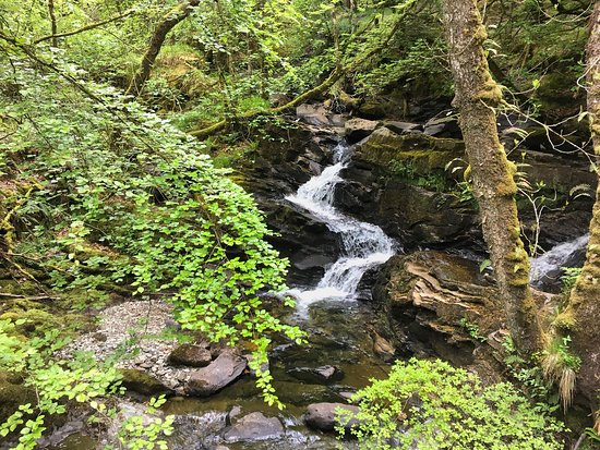 Scottish Guided Tours: Rob Roy MacGregor Country