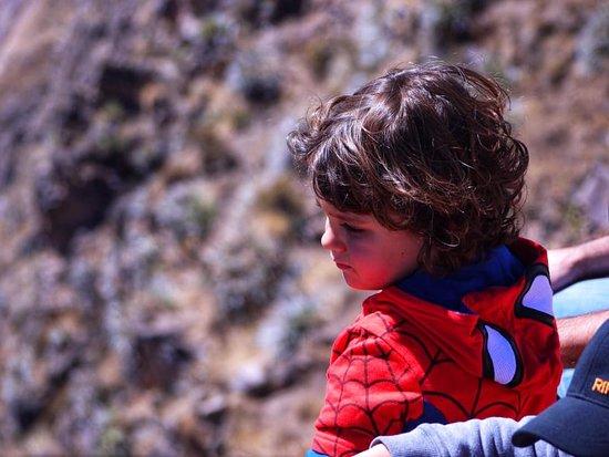 Colca Canyon, Peru: Esperando el vuelo del cóndor