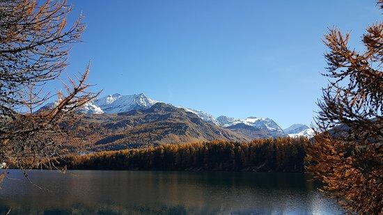 Engadin St. Moritz, İsviçre: Autunno in Engadina nei pressi di St. Moritz (Grigioni, CH)