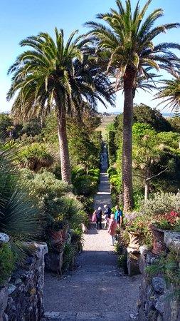 Tresco Abbey Garden & Valhalla Collection: One of the main pathways