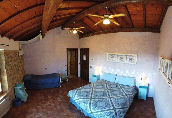 Casale MilleSoli: #bedandbreakfast #umbria #lagotrasimeno #perugia #holiday #nature #relax #casalemillesoli #italy #green #cool #moon #star #igtravel #vacation