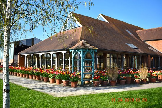 Our beautiful tulip display lining the walkway to the gift shop entrance - April 2019