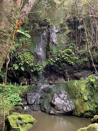 滝の裏歩けます。