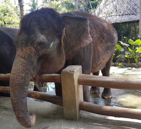 Lombok Wildlife Park