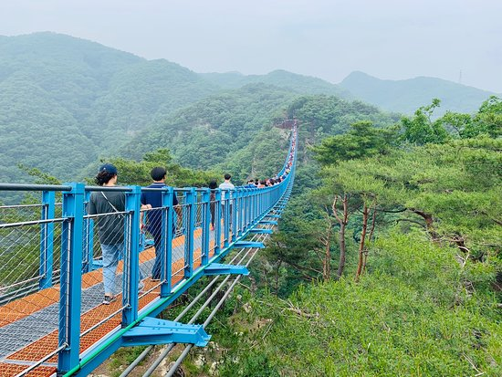 Wonju Sogeumsan Mountain Suspension Bridge
