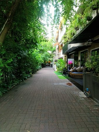 Path to relaxing