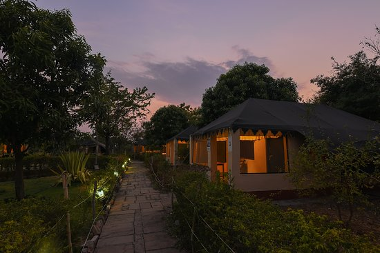 the 5 best tadoba andhari tiger reserve lodges 2019 with prices rh tripadvisor in