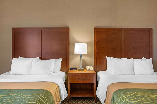 Comfort Inn: Guest room with queen bed(s)